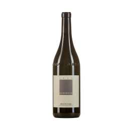 """Domaine Sandrone """"Dolcetto D'Alba"""" Rouge 2017"""