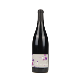 """Terres Promises """"A ma guise"""" Magnum Rouge 2019"""