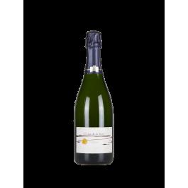 """Champagne Françoise Bedel """"L'Ame de la Terre"""" 2006 Champagne Brut"""